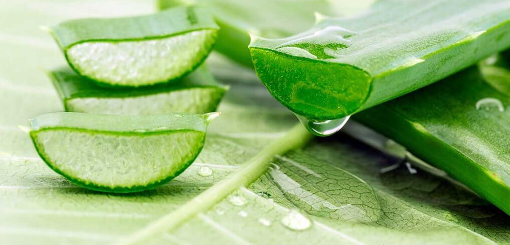 Productos Aloe Vera Naturales